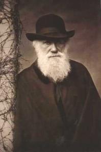 darwin-21