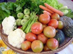 verduras13